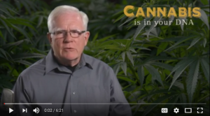 Cannabis Is In Your DNA YouTube